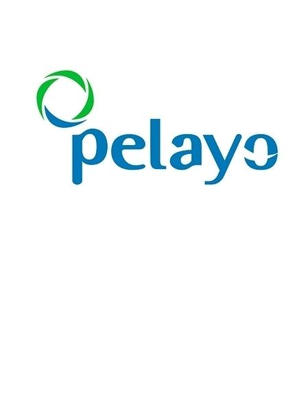Pelayo obtuvo un beneficio de 2,6 millones en 2017, un 6% más.